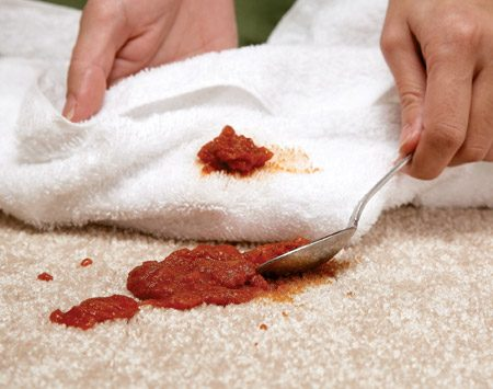 <b>Don't dig or scoop food spills</b><br/>Digging or scooping can work the stain into the carpet. If there are solids on top of the stain, use a spoon or dull knife to carefully scrape the food toward the middle of the spill and into a white towel and then treat the stain.
