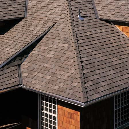<b>Premium shingles</b><br/>If you live in a hurricane-prone area, wind-resistant roofing materials with a higher wind rating can lower your premium. <br/>Photo courtesy of Certainteed Corp.