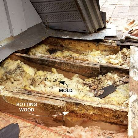 <b>Roof leak damage</b></br> A small leak caused the roof sheathing and rafters of this home to rot. Mold grew in the insulation as well.