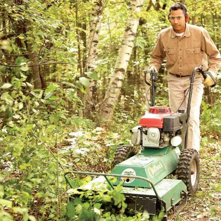 <b>Brush cutter at work</b></br> A brush cutter is the fast way to clear out overgrown areas.