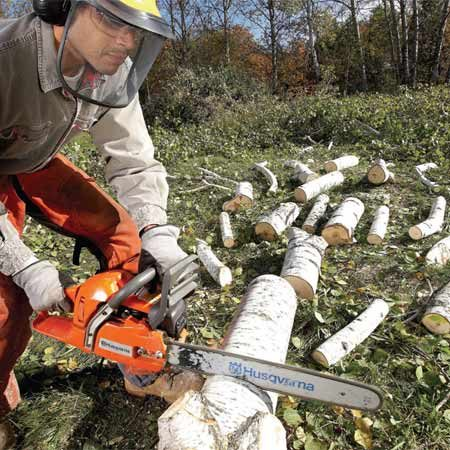 <b>Fast work with a chain saw</b></br> A chain saw can cut up a tree fast. But be sure to work safely.