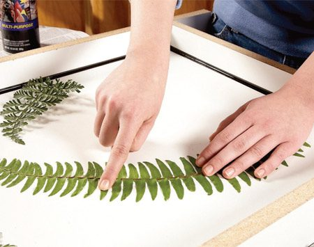 "<b>Photo 3: Inlays</b></br> Glue down leaves with spray adhesive to cast ""fossils"" in the tabletop. Press the leaves completely flat so concrete can't seep under them."