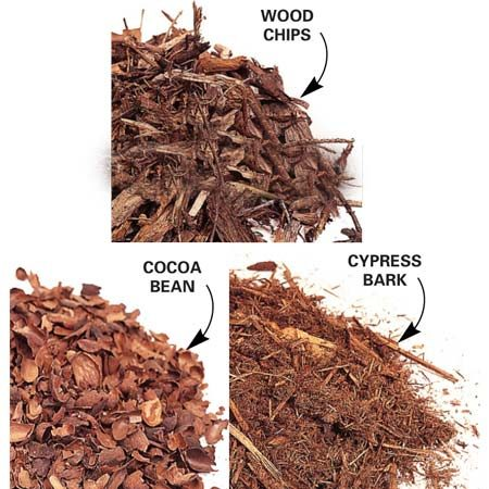<b>Mulch</b></br> Three common types of mulch suitable for paths are wood chips, cocoa bean, and cypress bark.
