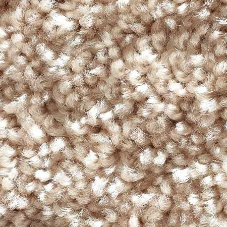 <b>Textured</b></br> Textured cut pile has more than one color of yarn and varying tuft heights. Its two-toned appearance hides dirt and reduces footprints and vacuum marks, making it a better choice for active lifestyles. It's similar to Saxony in life expectancy and cost.