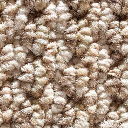 <b>Looped or Berber</b></br> Looped or Berber is popular for its elegant appearance. Berbers with smaller loops wear better than large-looped Berbers, which mat down quickly and are harder to clean. Not good if you have small children or pets (toys and claws) because they snag and run easily and are tough to repair.