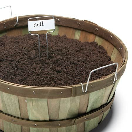 <b>Test your soil </b></br> Because extreme moisture levels and low temperatures can skew pH readings, the best time to test your soil is mid to late spring or early fall.