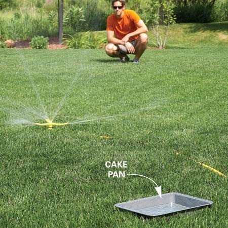 <b>Photo 5: Measure the right amount of water</b></br> Set a cake pan halfway between your sprinkler and the edge of the spray pattern. Watch your clock to see how long it takes the sprinkler to fill the pan with 3/8 in. of water. Water for that amount of time three times a week, unless it rains.