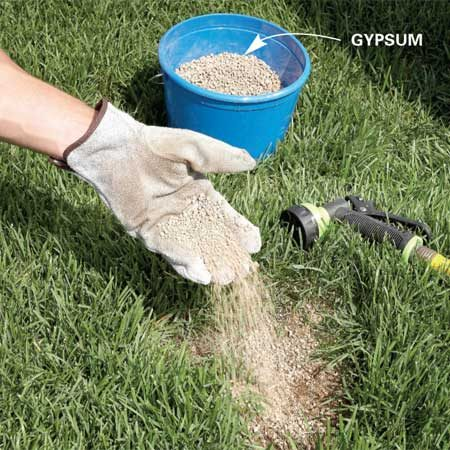 <b>Photo 7: Neutralize dog spots</b></br> Gypsum and water are the antidote for dog spots in your yard. Gypsum neutralizes the dog urine, and the water soaks the area for new grass seed. If you treat the brown spots early, your grass won't die.