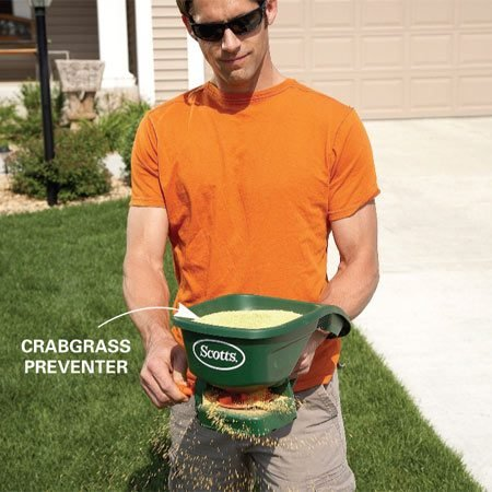 <b>Photo 8: Stop crabgrass before it starts</b></br> Apply crabgrass preventer to any areas where crabgrass previously grew. A hand spreader is perfect for small areas, like along the pavement where crabgrass tends to grow.