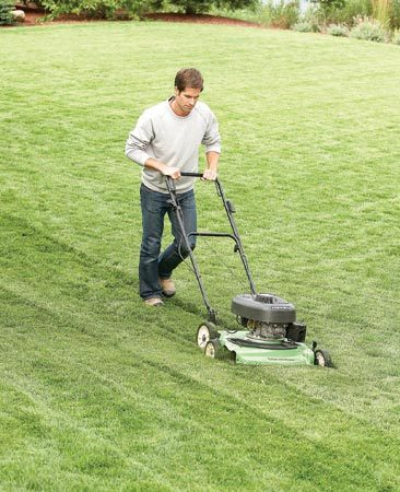 <b>Photo 11: Face winter with short grass</b></br> Mow the grass short at the end of the year. This reduces the chance that your lawn will get snow mold and vole damage.