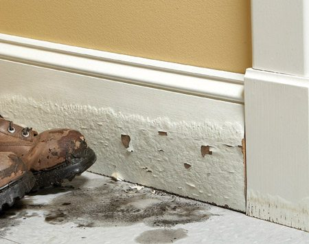 """<b>Water kills MDF</b></br> <p>MDF stands up to moisture about as well as graham  crackers. A few water   drops will raise small bumps on the surface. A long  soaking will make it swell   to twice its original thickness. So MDF is a risky  choice for baseboards in entryways   and trim near tubs or sinks. My all-time greatest MDF  mistake was using   it for windowsills in my own home. Condensation from  the windows made   them swell just like the baseboard shown here. If you  use MDF as baseboard,   be sure to paint the lower edge before installation.  That will provide short-term   protection against occasional spills. Also install the  baseboard about 1/4 in.   above the floor and then cover the gap with wood base  shoe molding. There are   moisture-resistant versions of MDF, but they're hard  to find. To find manufacturers and dealers, search online for """"moisture  resistant MDF.""""</p>"""