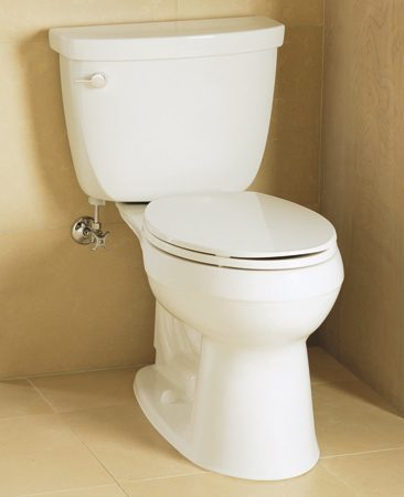<b>A good flusher</b></br> Kohler Cimarron Comfort Height elongated 1.6 gpf, model K-3589; at home centers and online retailers.<br><br> <a href='http://www.us.kohler.com'>us.kohler.com</a>
