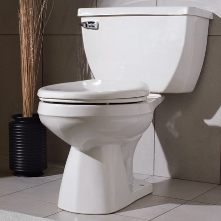 <b>A pressure-assist toilet</b></br> Gerber Ultra Flush pressure-assist 1.6 gpf, model 21-302; at plumbing showrooms and online retailers. <br><br><a href='http://www.gerberonline.com'>gerberonline.com</a>