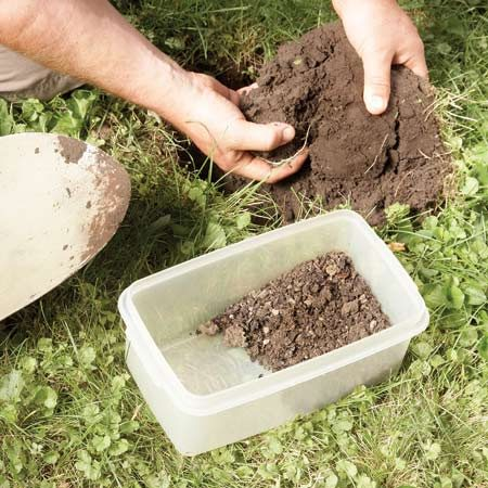 <b>Collect samples for a soil test</b></br> Plunge your spade about 6 in. deep and pull out a plug of soil. Then slice off a section of the plug (top to bottom). Remove the grass and rocks and mix all the samples together.