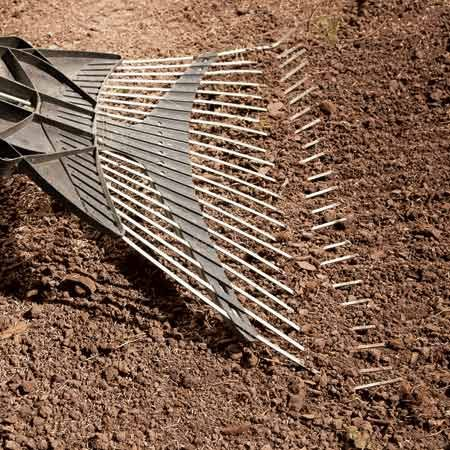 "<b>Rake the soil</b></br> Level and smooth the soil with a broom rake. Then drag the rake (tines up) to create ""furrows."""