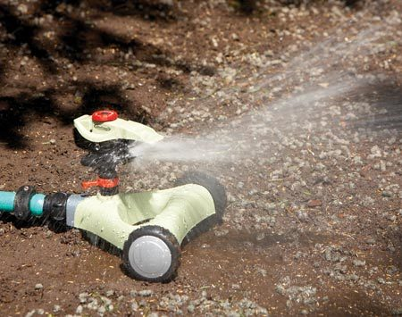<b>Water regularly</b></br> Place an impact sprinkler in the corner of the lawn and set it to spray in a quarter arc. Then move it to the other corners.