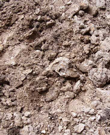 <b>Soil before amending</b></br> Heavy clay soil—mushy and sticky when wet, hard as concrete when dry.
