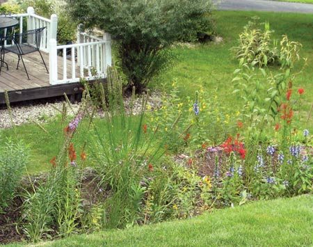 <b>Rain garden</b></br> Convert a low, wet area to a rain garden with water-tolerant plants.