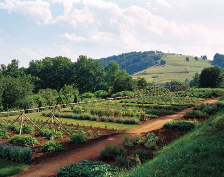 <b>Jefferson's garden</b></br> The gardens of Monticello are a botanic showpiece and experimental laboratory for hundreds of historic plant varieties.