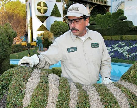 <b>Craig Minasian</b></br> Craig Minasian is the Master Senior Topiary Engineer at Disneyland Resorts
