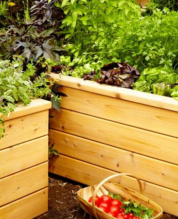 Build a self-watering planter