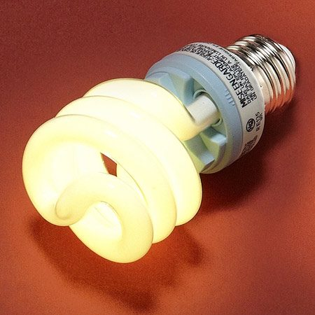 <b>Compact fluorescent light (CFL) bulb</b></br> CFLs are highly efficient and last a long time.
