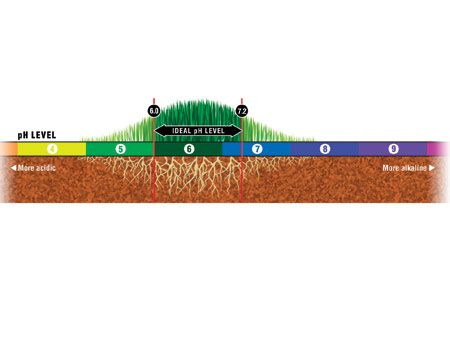 <b>Ideal pH level</b><br/>Grasses like a pH level between 6 and 7.2.<br/>Illustration courtesy of Trevor Johnston