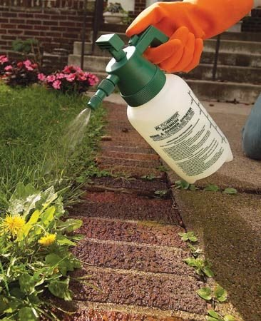 <b>Small pump sprayer</b></br> Use a small pump sprayer to eliminate the few leftover weeds.