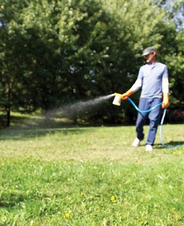<b>Hose-end sprayer</b><br/>A hose-end sprayer with liquid weed-killer is a fast and effective solution for a lawn filled with weeds.