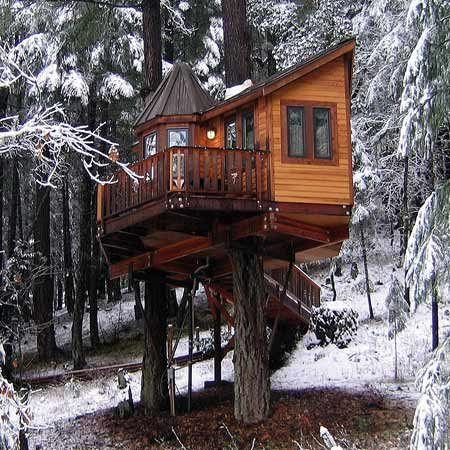 <b>Designer tree house</b><br/>A tree house can be a place for the imagination, as shown in this design.<br/>Photo courtesy of Vertical Horizons