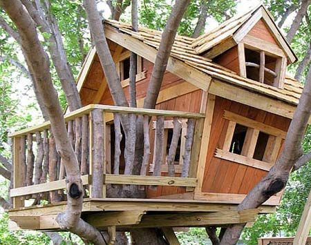 <b>Level and sturdy</b></br> To keep a large tree house stable, center the load over the trunk and spread the weight among several branches.