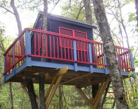 <b>Photo 2: Piece by piece</b></br> If branches penetrate areas of the tree house, complete the construction up in the trees.