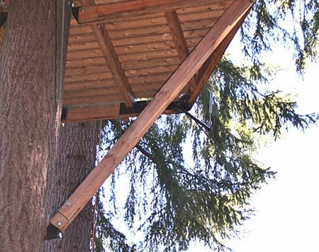 <b>Specialty fastener</b></br> Minimize tree damage by perching beams and braces on top of specialty fasteners instead of pinning them to the tree.