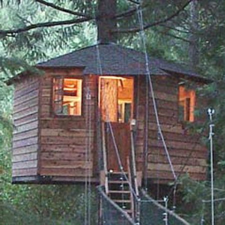 <b>Out'n'About tree house resort</b></br>