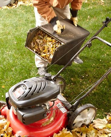 <b>Mower collection</b></br> We have a BIG yard and lots of trees. So I bag the leaves with my mower. It does a nice job of shredding the leaves, so they're ready to become compost or mulch.<br> <b>Gary Dowley</b>