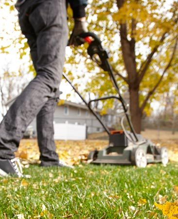 <b>Lawn fertilizer</b></br> A mulching mower shreds leaves into tiny flakes that settle into the turf and decompose into natural fertilizer. You might have to go over some areas two or three times to completely chop up the leaves. Still, it's fast and easy and it makes the grass happy.