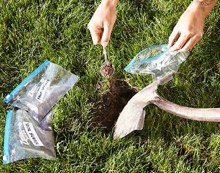 <b>Test the soil</b></br> <p>You can collect your own samples  by randomly pulling 10 to 12 individual soil samples from your lawn to a depth  of 3 to 4 in. Make sure there is no vegetation or excessive root mass in the  soil sample. Mix together the soil samples and put about a cup of this mix in a  plastic bag. Write your name on the bag and send it off for testing. </p>