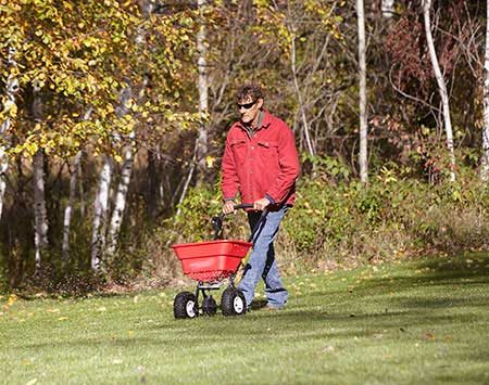 Using a spreader to fertilize a lawn.