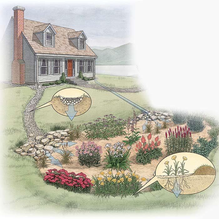 "<b>Build a Rain Garden</b></br> <p>If you have a low spot in your yard that tends to collect and retain water, consider building a rain garden. A rain garden is simply an area of your yard that's designed to catch water and is filled with water-loving plants. It doesn't really solve a soggy yard problem, but a rain garden looks a lot better than a muddy hole. Plus, rain gardens are good for the environment. They reduce runoff and the lawn chemicals, pet waste and sediment that go along with it.</p>  <p>A rain garden doesn't have to hold water like a pond. You can add drainage and use the rain garden to hold the excess water until it has a chance to drain away. A key part of rain garden design is choosing the right plants for the soil conditions. Typically native plants with deep fibrous roots work well. Learn more about <a href=""http://www.familyhandyman.com/garden/how-to-build-a-rain-garden-in-your-yard/view-all"">how to build a rain garden</a> in your yard.</p>"