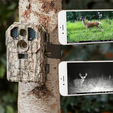 "<b>4: Game cameras</b></br> <p>Also called ""trail"" or ""scouting"" cameras, game cameras are designed primarily for hunters and wildlife photographers. However, if the spot where you want to place a surveillance camera is in a wooded area without an electrical outlet or Wi-Fi signal, a camera like the Stealth Cam P22 shown here might be just the thing. While it won't send you alerts or allow you to stream live video over the Internet, this camera—which you just strap to a tree—will capture high-quality photos and video whenever a person or animal walks by, even at night. This type of camera is powered by regular batteries or an external battery box and stores images on a removable SD card that holds up to 32GB of media. When you want to see what the camera recorded, you just connect it to your computer with a USB cable (or plug the SD card directly into your computer or card reader).</p>"