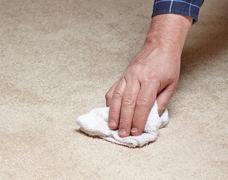 <b>Photo 2: Blot Gently</b></br> Fold a clean white cloth into a small square and dab the carpet, starting at the outside edge. Roll the cloth toward the center and refold the cloth to a clean section as you soak up more stain.