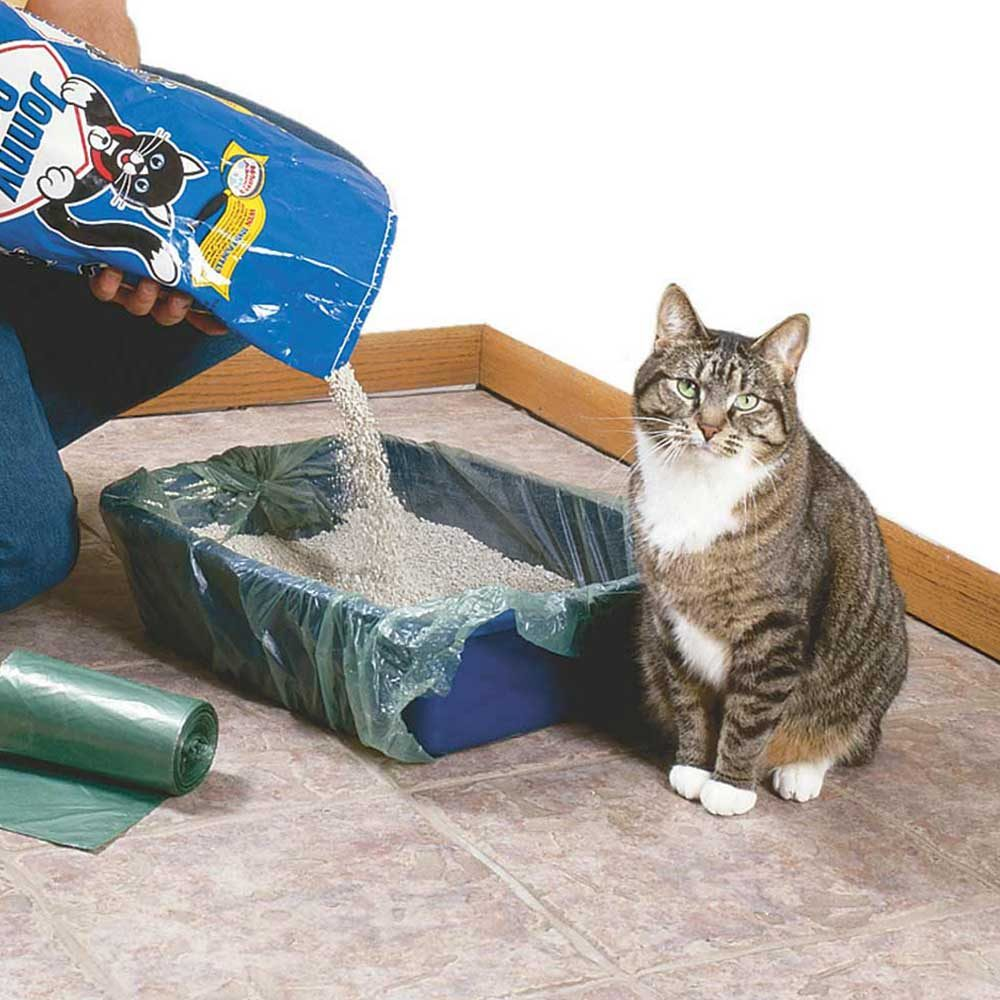 Quick Cleanup Cat Litter