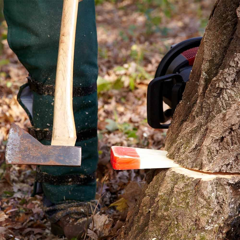 Cutting A Tree : Cut down a tree safely the family handyman