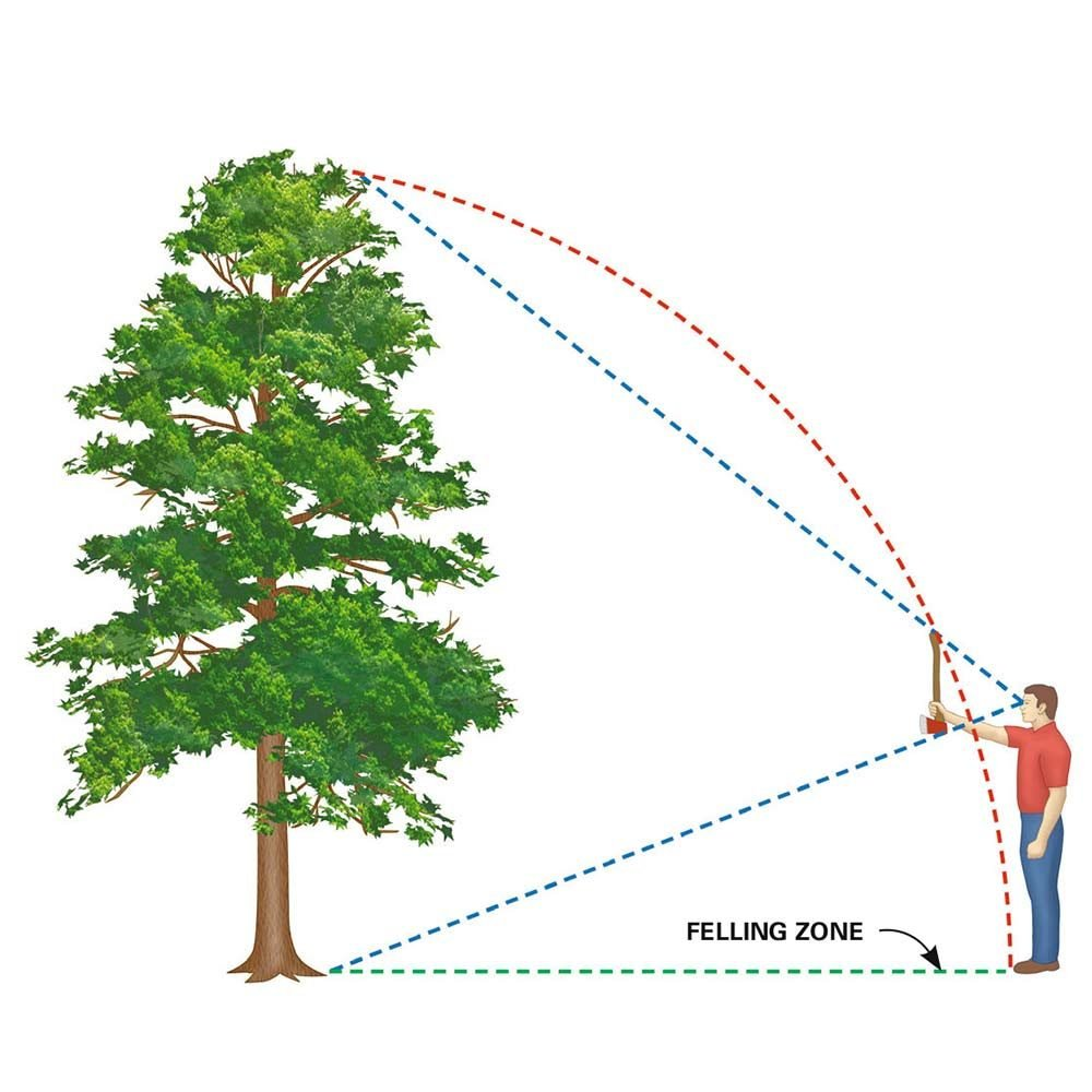 Estimate the Felling Zone