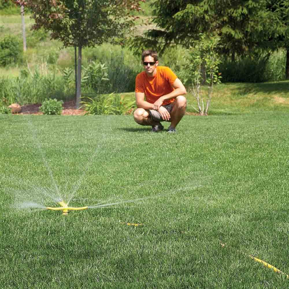 The best natural and organic green lawn care tips the for Care for new sod