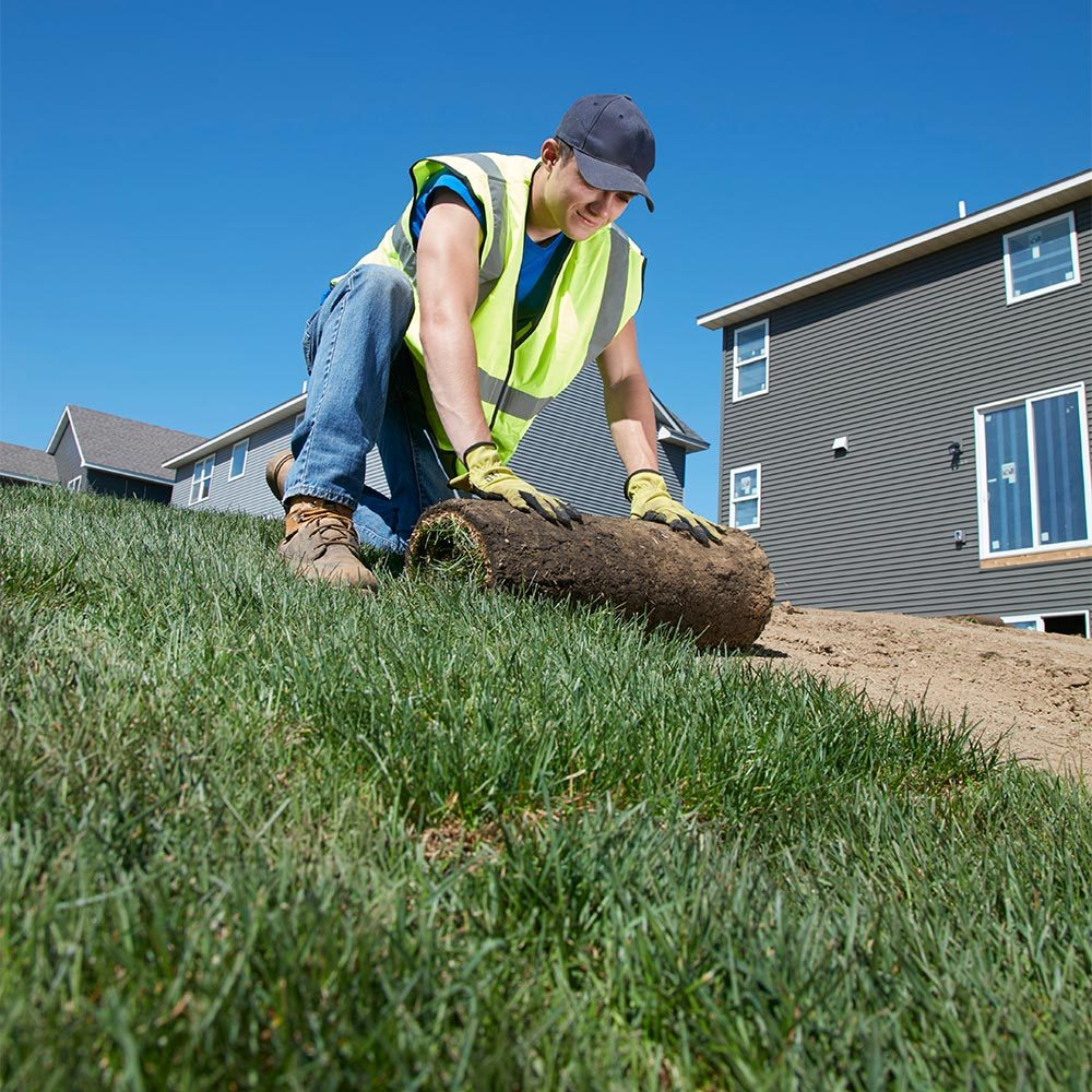 Divide the Yard Into Long, Narrow Sections