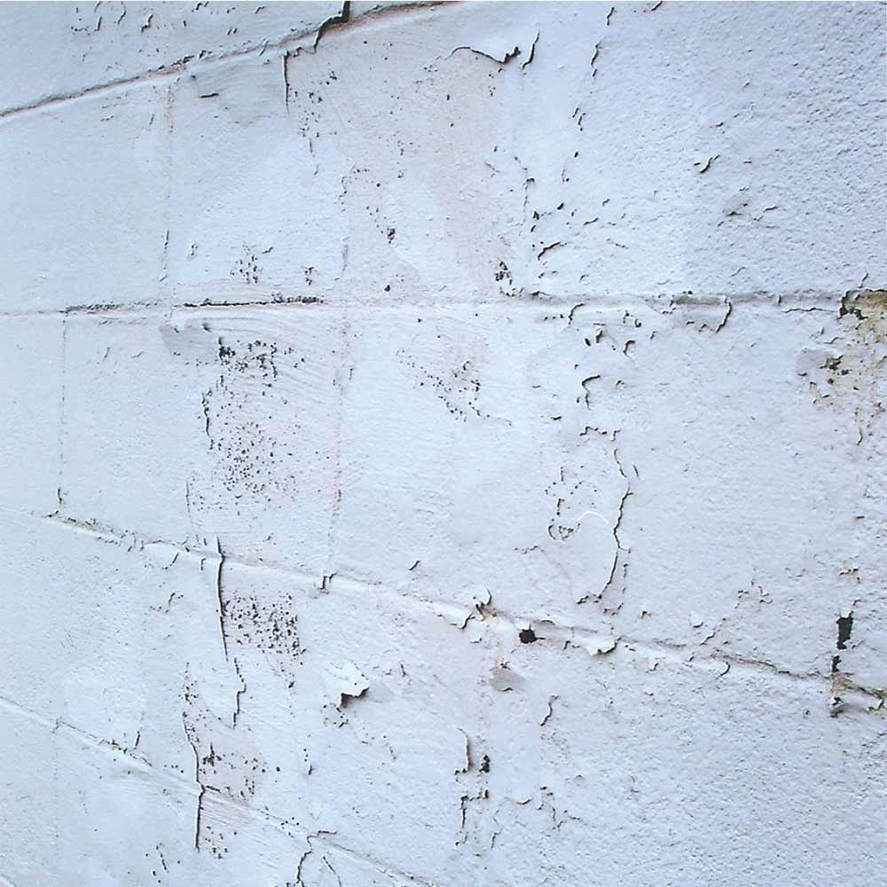 Paint May not Stick to Exterior Block Wall