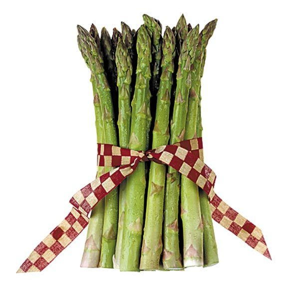 Freshly cooked asparagus spears