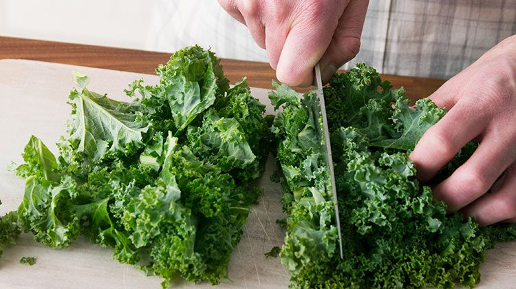 person holding down a large bunch of kale leaves as they cut them into strips with a knife