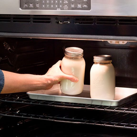 Two large mason jars filled with yogurt being placed into a metal pan in an oven